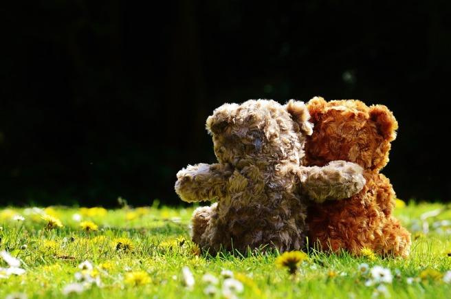 teddy-1361396_960_720.jpg
